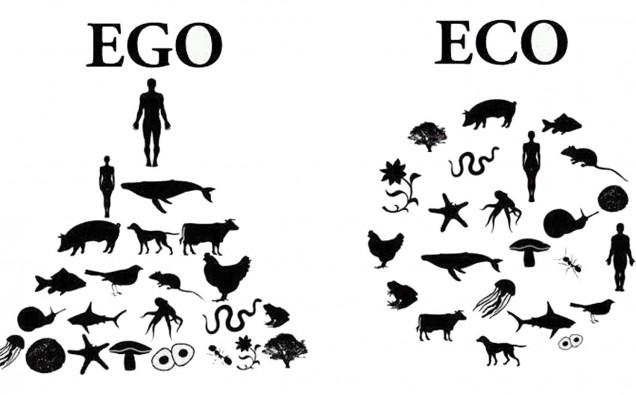 ego-eco-636x395